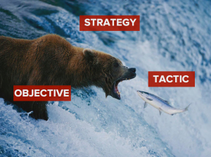 Image credit: No hibernation for the Content Strategy Bear